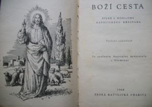 bozi_cesta